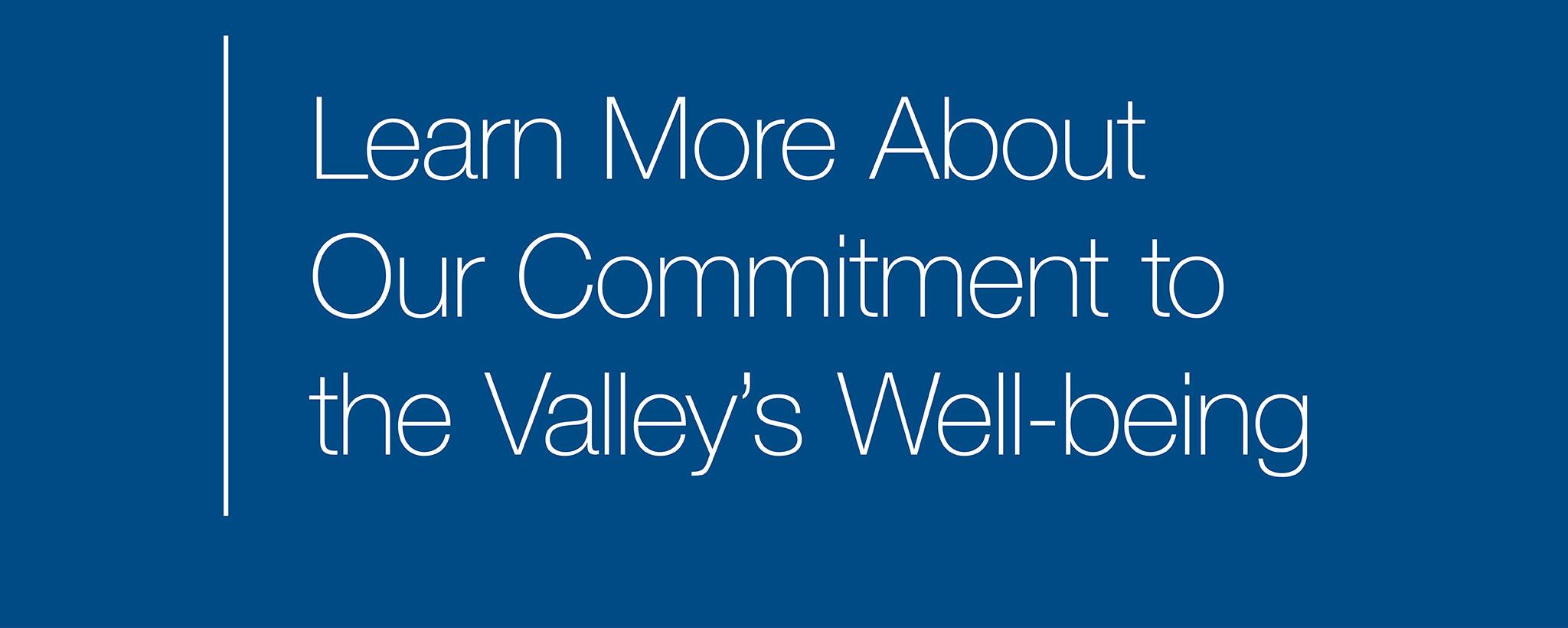 2020-3363 TVA Commitment