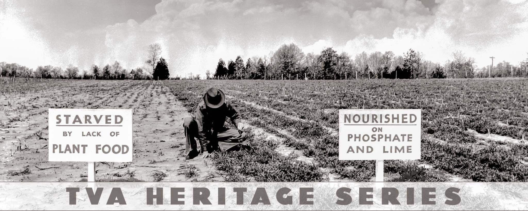 farmer in field tending plants