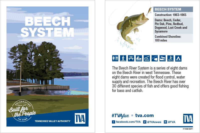 Beech System