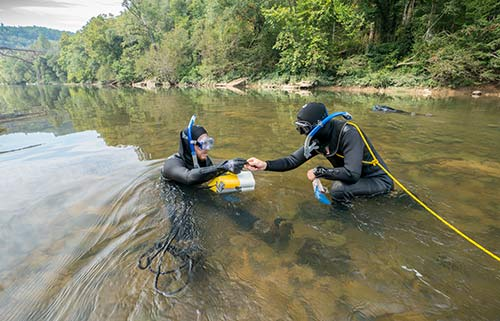 biologists-in-water