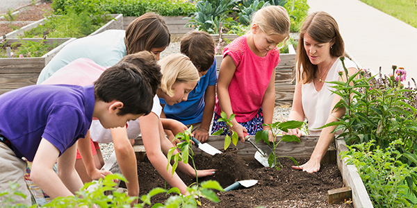 Teacher planting with children