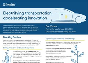 Image of EV Strategy and Vision document