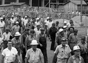 1950s plant workers