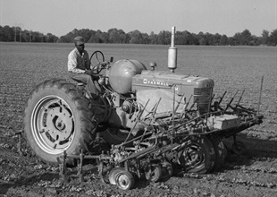 Tractor in 1950w