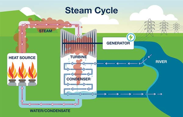 Steam Cycle Infographic